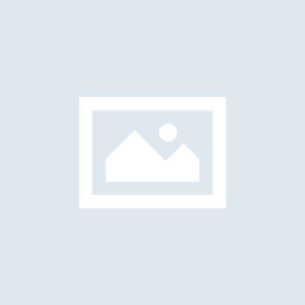 Auslieferung /- Technischer Service